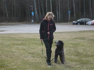 Hundägarakademi kursavsl vt17 010