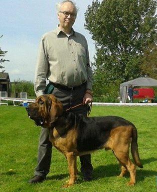 11169191_846591035417110_1076992451558929304_nBert best dog!