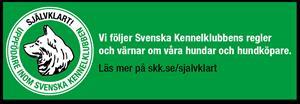 SKK banner