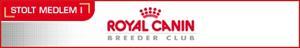 Royal logga