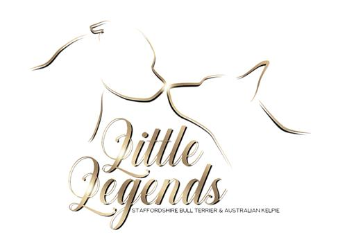 Logo little legends - vit balgrund