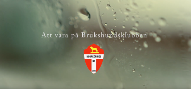 thumbnail_Skärmavbild 2019-04-01 kl. 12.24.10