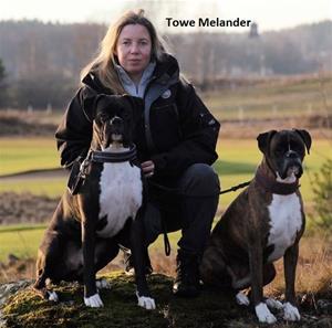 Towe Melander