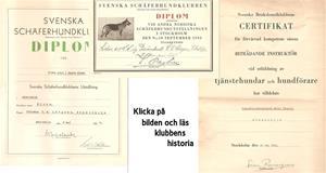 Diplom Klodo 1937