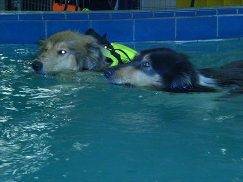 Simning 1 L