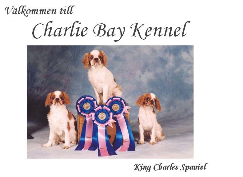 Välkommen till Charlie Bay