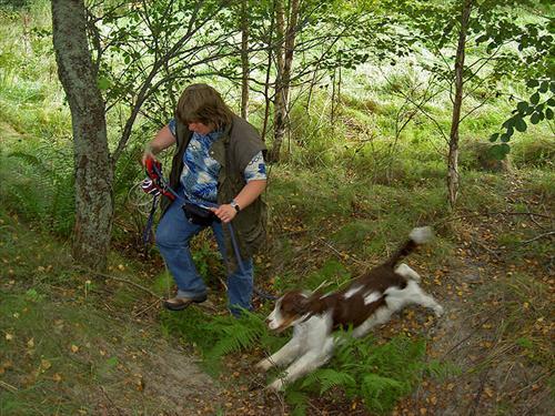 Kiwi springer upp för bergetmed Susanne efter