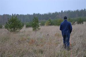 viltspår 2011-11-12 031