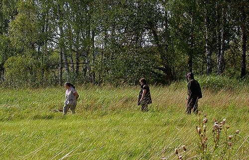Eva Wiklund går sitt fält arbete med en av sina hundar