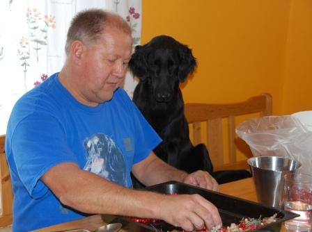 Greta hjälper husse rensa lingon