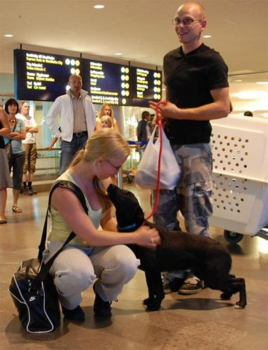 Arlanda 20100803 039licorice