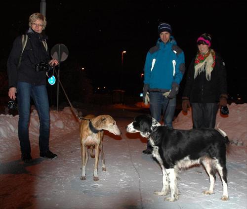 Arlanda hämtning 2010-01-15 016leikasmilla