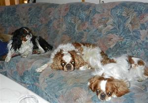 Fredagsmys i soffan