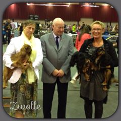 53. Zwolle 2014-10-04
