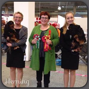 59. Herning 2014-11-01