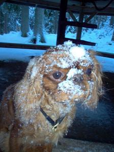 Snögumman Amy. Snö är härligt.