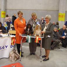 6. Malmö 2012-03-17