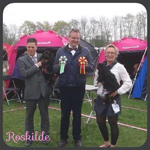 2015-04-25 Roskilde