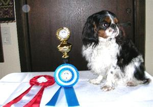 Kropp 2010-05-08