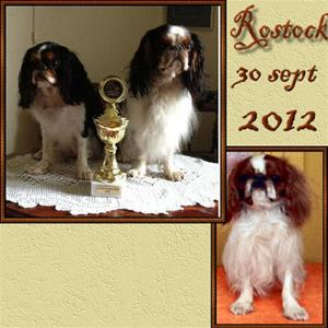 48. Rostock 2012-09-30
