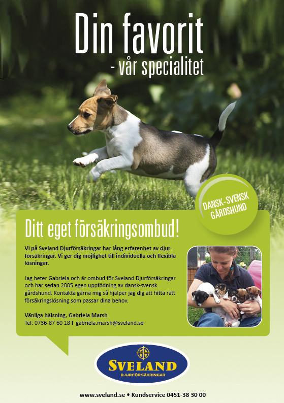 gabriela_dansk-svensk gårdshund