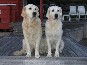 Signe och Stella på bryggan.