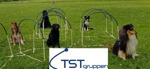 TST hoopers