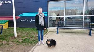 Hundkontrollen innan Eurotunneln i Calais 7 mars 2015