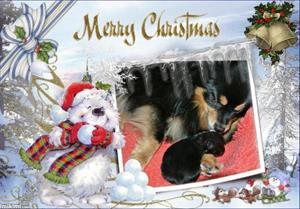 merry christmas - 2Gbpu-10q - normal