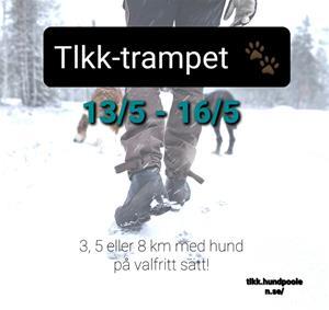 TLKK-trampet