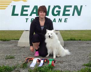 Jack  Norsk agility champion