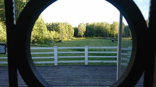 Gräsplan södra genom fönster fotoAnnGottvall