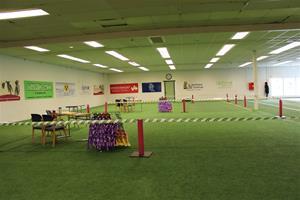 Utställnigslokalen färdig att ta emot hundar, domare, hussar, mattar och åskådare