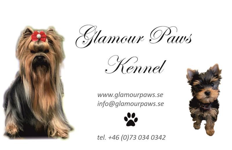 Visitkort Glamour