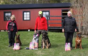 SpårDM 2013 Vinnare Bjarne Westergren, Kumla BK