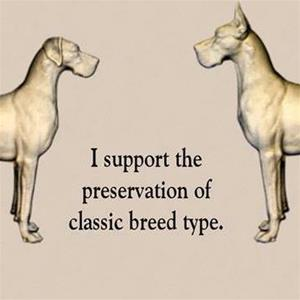 I support the preservation of classic breed type