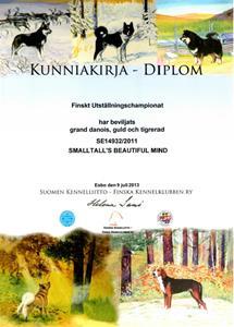 Finsk Uställningschampion