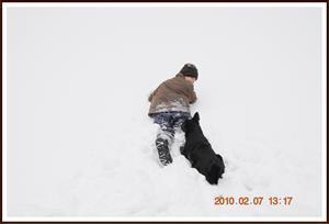 2010-02-07 Dixy & lillhusse leker i snön