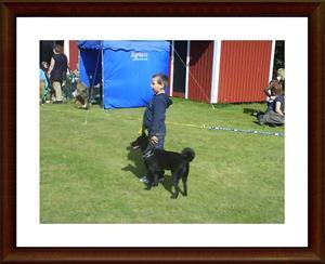 2007-08-25 Lillhusse och Dixy på sin första barn med hundutställning på Njurdungs brukshundsklubb