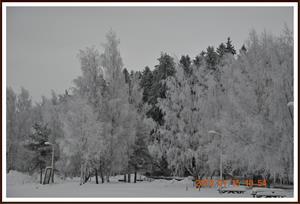 2010-01-15 Vintervy ifrån trappen 1