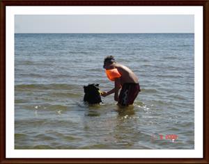 2008-08-01 Frisbeelek med lillhusse Billy
