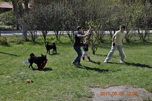 2011-05-08 Lek i trädgården med barnen