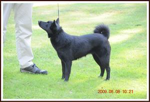 2009-08-08 Diana