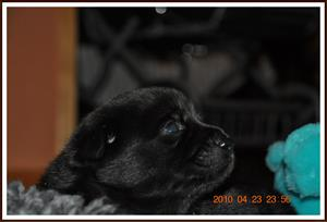 2010-04-23 Profilbild