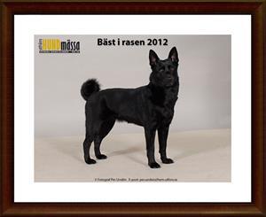 2012-12-16 Kaxa BIR 2012