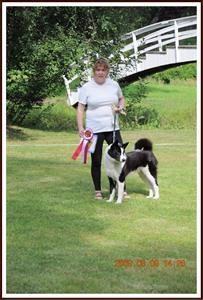2009-08-09 Jekkabackens Pikka: Den finaste älghunden på söndagen