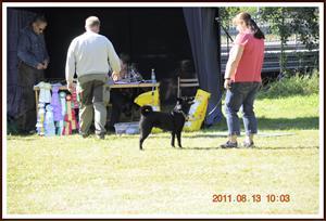 2011-08-13 Dalomsvikens Queen-Of-Black