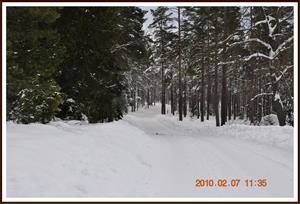 2010-02-07 Vinterlandskap  Fjällmossen 9