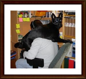 2008-01-08 Hjälper matte med hemsidan