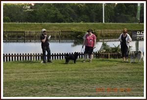 2011-06-04 Kaxa på Elmia
